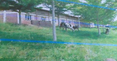 Ababyeyi bashinze ishuri APERWA baratabaza Perezida Kagame